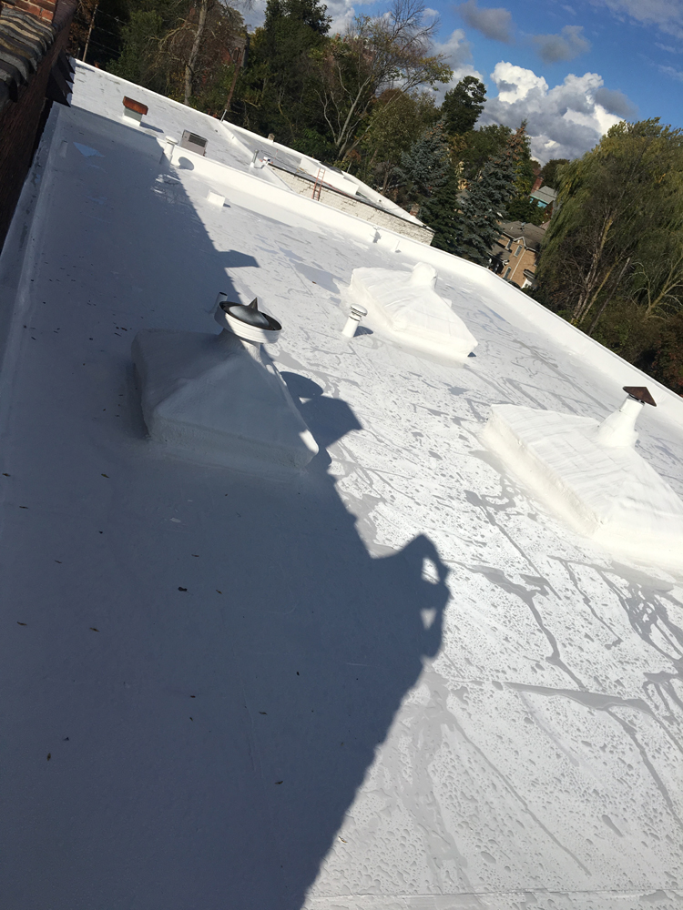 Sherwin Williams Roof